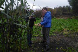 Земля многодетным семьям в ярославской области как дается