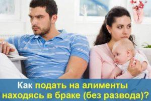 Алименты в браке без развода форум