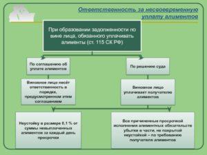 Несвоевременное перечисление алиментов организацией ответственность