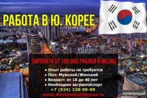 Как найти работу в корее гражданин россии