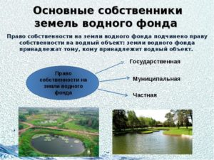 Понятие и структура земель водного фонда реферат
