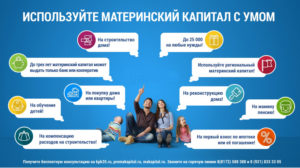 Сроки получения мат капитала регионального в ленинградской области