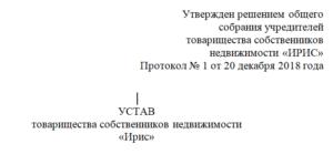 Устав по закону 217 фз