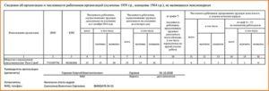 Отчет в цзн по предпенсионному возрасту 2020