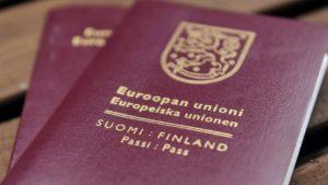 Получить мордвину гражданство финляндии