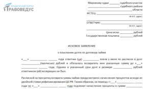 Исковое заявление в суд о выплате задолжности образец лнр