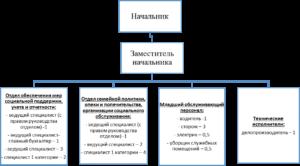 Структура органов опеки и попечительства в рф схема