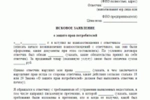 Исковое заявление по защите прав потребителя по несостоявшемуся туру