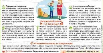 Как использовать материнский капитал если заемщик мать а созаемщик дочь