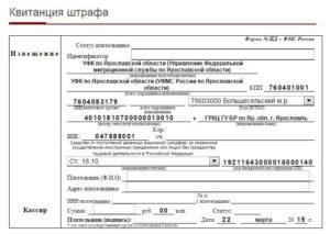 Может ли дпс выписать штраф по фио без паспорта и выдачи чека