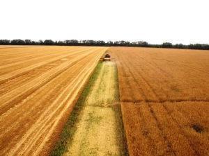Земельный пай цена