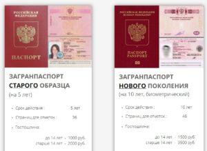 В течение какого времени делают паспорт