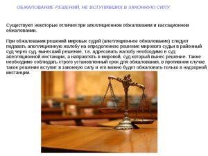 Как обжаловать вступившее в законную силу решение мирового судьи