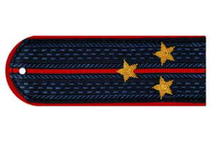 Погоны лейтенанта полиции на китель