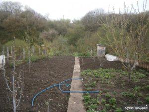 Как оформить землю под коллективное садоводство