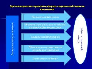 Организационно правовая форма усзн