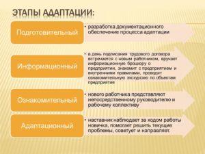 Адаптация персонала в организации понятие виды стадии
